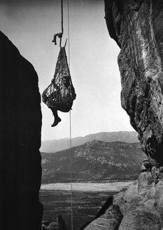 Μετέωρα, ανάβαση του FRED BOISSONNAS με το καλάθι, 1908 - Το 1908 ο Fred ταξίδεψε και πάλι στην Ελλάδα. Αποβιβάστηκαν στην Αίγινα από όπου πέρασαν στην Επίδαυρο, στην Αττική και κατέληξαν στα Μετέωρα. Τον Αύγουστο του 1910 κυκλοφόρησε το λεύκωμα «En Grèce par monts et par vaux» (Στην Ελλάδα μέσα από τα βουνά και τα λαγκάδια), με τις υπογραφές των Fred και Daniel. Παρά το γεγονός ότι ήταν πανάκριβο, το λεύκωμα, σύντομα εξαντλήθηκε. Οι κριτικές ήταν διθυραμβικές. Πηγή: www.lifo.gr