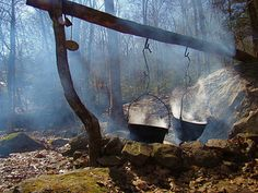 Magical Muse | valscrapbook: Maple syrup making - the old...