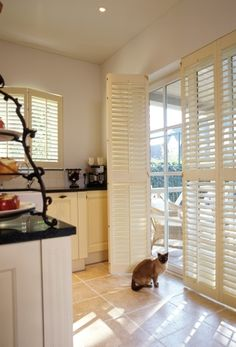 Internal door shutters for the juliette balcony in the master bedroom. Door Window Treatments, Window Coverings, Blinds For Windows, Windows And Doors, Store Venitien, Juliette Balcony, Interior Shutters, Sliding Glass Door, Sliding Doors