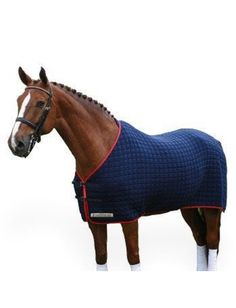 Thermatex Original Cooler Rug In Navy And Red