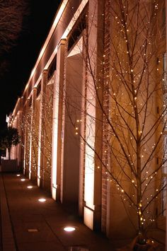 Hurlingham Club London | Natural birch trees with warm white pealights by www.stressfreehire.com #venuetransformers