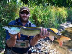 Jump River Muskie on the fly