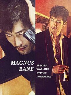 Magnus Bane...my favourite male character from TMI(him and Alec)!