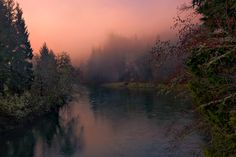 """softwaring: """" The moon hangs over the Sol Duc River and warmly lit trees at this popular fishing spot along the river. Trevor Anderson """""""