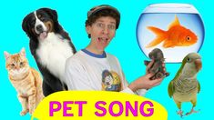 """Sing and Move with Matt in the fun Do You Have A Pet? Learn how to say, """" I have a dog """" in English. Also practice saying animal sounds like a cats meo. Music For Kids, Kids Songs, Learn English Kid, English Class, Number Song, Dream English, Frozen Songs, Name Songs, Animals For Kids"""
