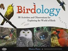 Birdology: 30 Hands-on Activities for Kids | Growing With Science Blog