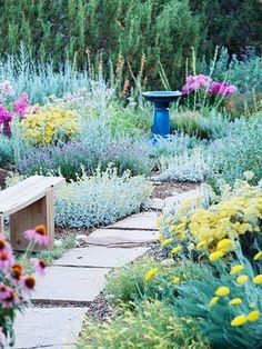 Garden Planning Tough-as-Nails Perennial Garden Plan Catmint >> Lavender cotton >> 'Moonshine' yarrow >> 'Munstead' lavender >> Penstemon >> Phlox >> Purple coneflower >> - Keep the color coming all season long with this easy-care garden. Perennial Garden Plans, Drought Tolerant Landscape, Perennial Gardens, Drought Resistant Plants, The Secret Garden, Design Jardin, Xeriscaping, Garden Cottage, Garden Bed