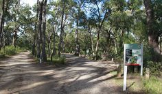 Entrance to Carrington Falls campground, Budderoo National Park. Photo: Chris…