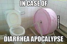 funny apocalypse bathroom pictures - Dump A Day Apocalypse, Toilet Paper Humor, Toilet Humour, Funny Jokes, Hilarious, It's Funny, Bathroom Pictures, Daily Funny, Bathroom Humor