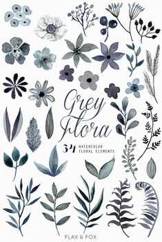 Grey Flora 34 Watercolor Elements hand painted by flaxandfox
