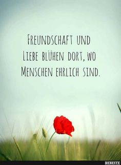 The most honest people - Friendship Happy Love Quotes, German Quotes, German Words, Love Words, Are You Happy, Positive Quotes, Verses, Friendship, Life Quotes
