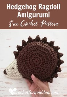 Crochet Hedgehog Ragdoll Amigurumi Free Pattern - Crochet For You Crochet Dolls, Crochet Hats, Crochet Flower, Crochet Animals, Amigurumi Patterns, Crochet Patterns, Crochet Hedgehog, Crochet Pillow, Yarn Colors