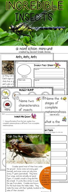 8 fact cards in 3 different formats - text dependent questions for each card, read the room activity and response ideas
