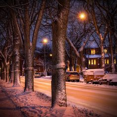 Westminster Avenue in Wolesley; my favourite neighborhood, Winnipeg, Manitoba Hatley Castle, Western Canada, City Lights, Westminster, The Neighbourhood, Beautiful Places, Scenery, Around The Worlds, Snowy Pictures