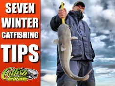Winter catfishing tips for locating and catching blue catfish in the winter. Tackle selection, gear, winter catfish bait and techniques for blue catfish Catfish Rigs, Blue Catfish, Catfish Bait, Catfish Fishing, Fishing Rigs, Fishing Videos, Fishing Guide, Gone Fishing, Best Fishing