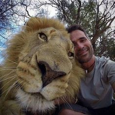 Whether we like it or not, selfies are here to stay. These Animal Selfies will have you laughing for days.