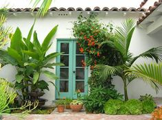 color of door,  white walls, minimalist greenery Tropical landscaping in a Los Angeles yard