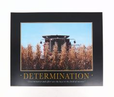 DETERMINATION 11 x 14 print  Corn Harvest