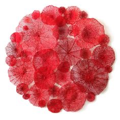 Australian artist Meredith Woolnough ( celebrates the beauty of nature in her stunning embroidery works. She uses a special sewing proce Textile Fiber Art, Textile Artists, Embroidery Works, Machine Embroidery, Embroidery Thread, Water Soluble Fabric, Coral Pattern, Contemporary Embroidery, Natural Forms