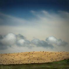 Island Landscape - The Orkneys, Scotland by Robert Moran., via Flickr