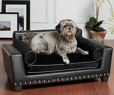 Furniture For Dogs Upholstered Dog Sofas Chairs Loungers Chaises And Beds To Spoil Your