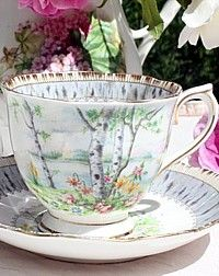 Vintage Royal Albert Silver BIrch Tea Cup & Saucer
