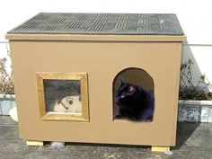 How to build an outdoor cat house and shelter. Add another entrance for escape and install cat flaps. Straw for insulation?