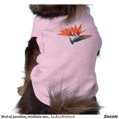 Bird of paradise, strelitzia exotic flower shirt