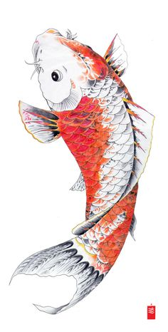 """Koi fish are the domesticated variety of common carp. Actually, the word """"koi"""" comes from the Japanese word that means """"carp"""". Outdoor koi ponds are relaxing. Japanese Drawing, Japanese Tattoo Art, Japanese Tattoo Designs, Art Koi, Fish Art, Koi Fish Drawing, Fish Drawings, Japan Tattoo, Carpe Coi"""