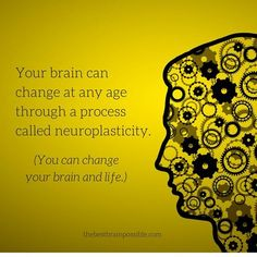 """As your mind changes, your brain changes; and as your brain changes, your mind changes"" Rick Hanson. How neuroplasticity can change your brain and life. Healthy Brain, Brain Health, Healthy Mind, Brain Facts, Brain Science, Neuroplasticity, Train Your Brain, Best Brains, Brain Injury"