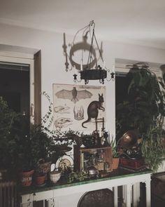 bergtagen:  My kitchen.