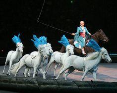 Circus Horses | Flickr - Fotosharing!
