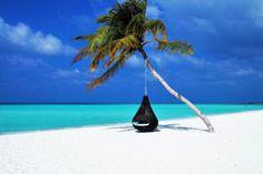 Maledivy info: kdy je nejlepší čas vyrazit? | ZAJÍMAVOSTI Kyushu, Destination Voyage, Paradise Island, Palawan, Island Resort, Doha, Relaxing Music, Travel Themes, Free Travel