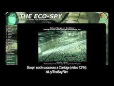 #TheBay - Clip 12/14 - EcoSpy