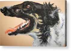 "Borzoi - Russian Wolfhound Dog: A pastel drawing of a borzoi dog printed on to the back of a 1/4"" thick acrylic sheet to produce a high gloss effect by Kelly Goss Art. Delivered ""ready to hang"" with two mounting options. Perfect to brighten up and decorate your home. Fit for any wall in any room. The special gift to spice up a friend's home decor. For a lover of animals, pets and art."