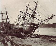 "American Barque ""Jane Tudor"", 1855 ©David Johnson"