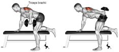 6 Triceps Workouts – Best Tricep Exercises for Beginners at the Gym Best Tricep Exercises, Upper Arm Exercises, Triceps Workout, Cigarette Addiction, Thermal Hotel, Weight Training, How To Plan, Google, Instagram