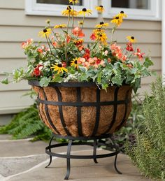 Round Steel Coco Basket Planter with Natural Coco Liner
