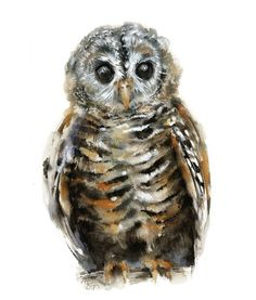 Owl watercolor - Owl Painting - Giclee Print - Home Wall Decor - Bird Watercolor Illustration - Owl Owl Watercolor, Watercolor Paintings, Watercolors, Owl Paintings, Bird Illustration, Watercolor Illustration, Fox Painting, Wildlife Decor, Bee Art