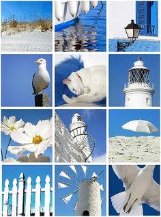 flickr favs :: blue & white by bailiwickdesigns, via Flickr