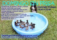 alteridad: Domingo sin Prisas - Mayo 2015 - CSA La Higuera - ...