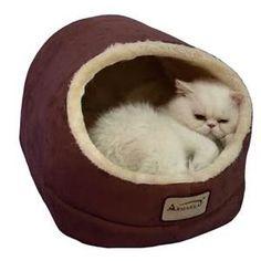 pet beds - Bing images
