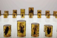 Chess set made of amber incased bugs (Alastair Mackie, Amorphous Organic, 2008)