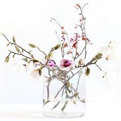 spring blooms b i r a m b i . c o m // BIRAMBI The post spring blooms appeared first on Diy Flowers. Spring Blooms, Spring Flowers, Spring Tree, Spring Bouquet, Ikebana, Amazing Flowers, Beautiful Flowers, Exotic Flowers, Tropical Flowers
