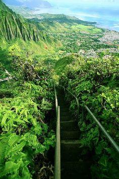 The Haiku stairs Oahu,Hawai