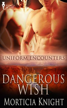 Dangerous Wish by Morticia Knight