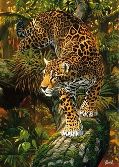 "Drawing Animals ""High Intensity"" - jaguar - High Intensity by Al Agnew - High quality British made wooden jigsaws with unique whimsy pieces, direct from Wentworth Wooden Puzzles. Wildlife Paintings, Wildlife Art, Animal Paintings, Animal Drawings, Drawing Animals, Big Cats Art, Cat Art, Beautiful Cats, Animals Beautiful"
