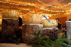 Genara's Stump Food display