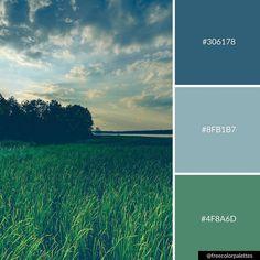 Even dark skies can produce beautiful colors. Green Color Pallete, Color Schemes Colour Palettes, Earthy Color Palette, Green Color Schemes, Blue Colour Palette, Room Color Schemes, Color Palate, Dark Blue Green, Dark Blue Color