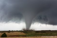 I want to see a tornado up close and in person... from someplace with a quickly and easily accessible basement. :)